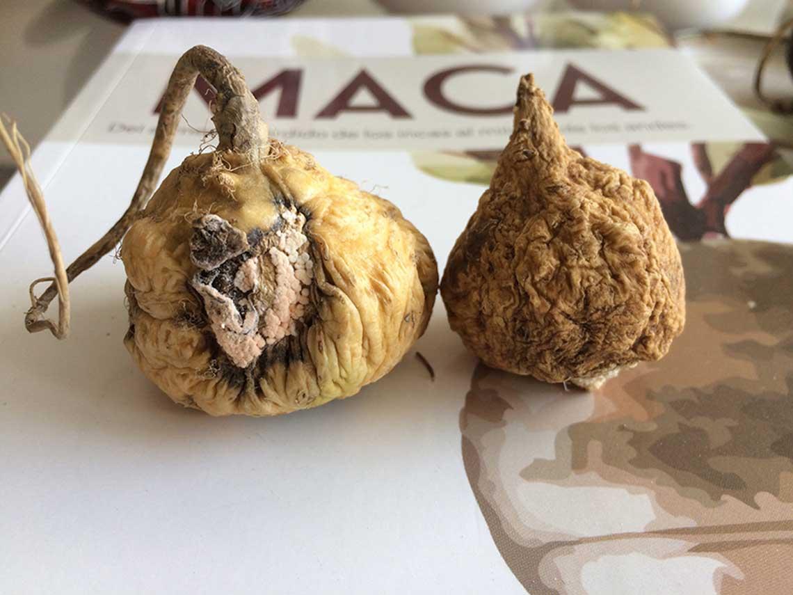 マカサポートデラックス マカ